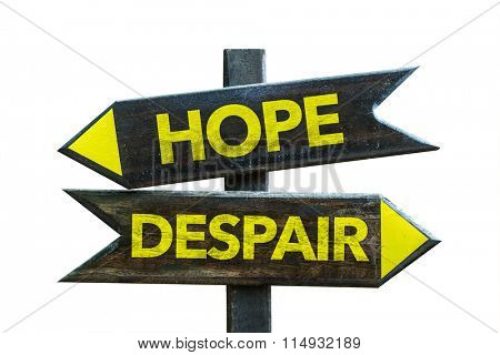 Hope - Despair signpost isolated on white background