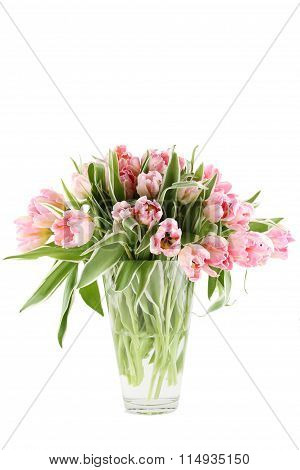 Bunch of pink tulips