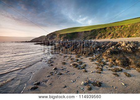 Hoodny Beach At Portwrinkle In Cornwall