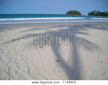 Two Coconut Palm Tree Shadows On Beach @ Bintan, Indonesia