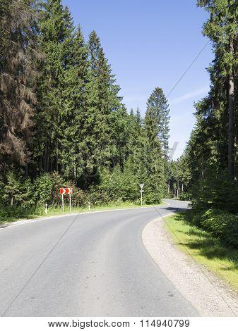 Asphalt Road In The Woods