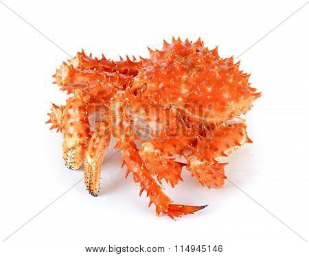 Alaskan King Crab In Isolated White Background