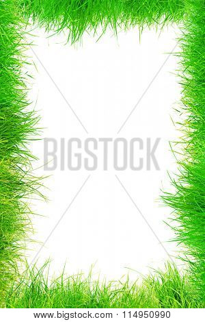 White background with frame from grass