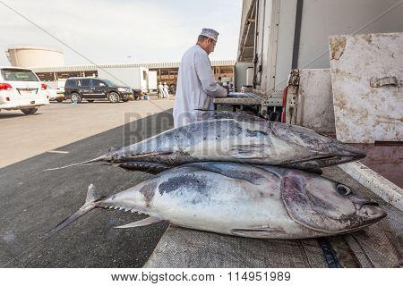 Tuna At The Fish Market In Muttrah, Oman
