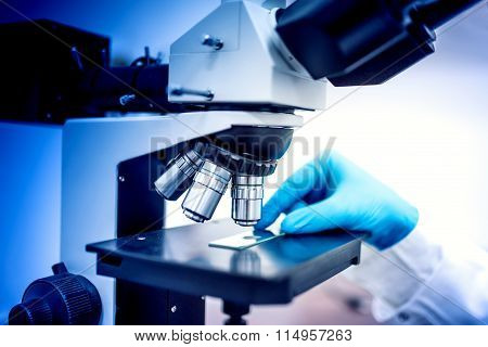 Chemist Testing Samples With Microscope And Rubber Gloves. Medical Chemist In Pharmaceutical Field E