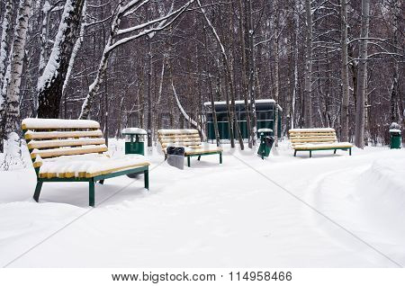 Benches And Trashcans In Snow