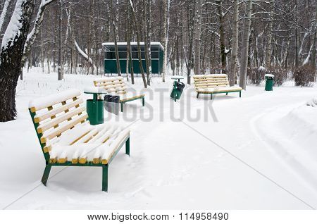 Benches And Trashcans In Winter