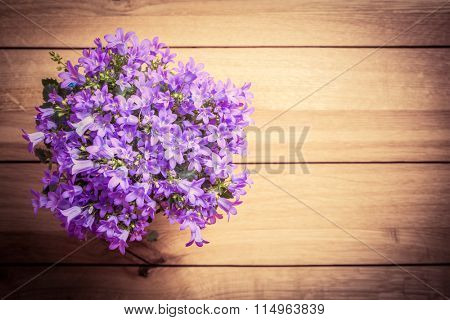 Bouquet of fresh flowers on rustic wood. Place for text, wishes etc. Tussock bellflower also known as Carpathian harebell