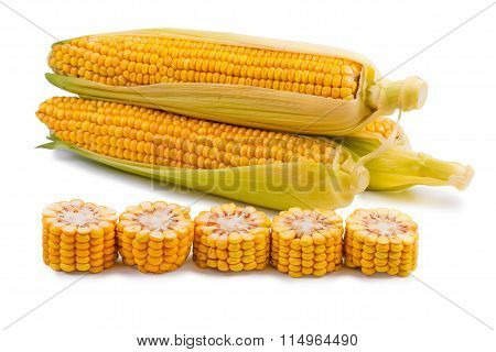 The corn which isn't cleared, the corn cut on