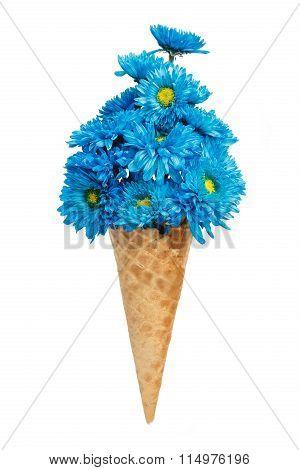 Blue Chrysanthemum Ice Cream Cone Flower Beautiful Fresh