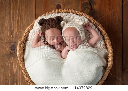 Twin Baby Boys Wearing Bear Bonnets