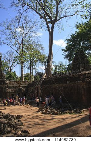 Tourists Walking The Path To And From The Main Temple At Angkor Wat Outside Siem Reap.