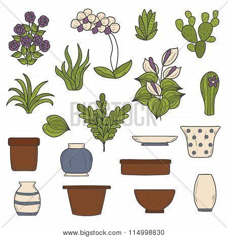 Set of  houseplants objects