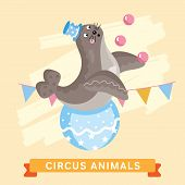 Постер, плакат: Circus Seals vector animal series