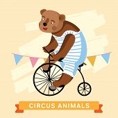 Постер, плакат: Circus Bear vector animal series