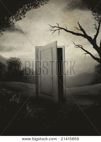 surreal vintage door painting