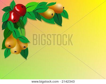 Fruit Border