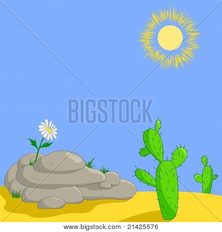 Flower on stones and cactuses