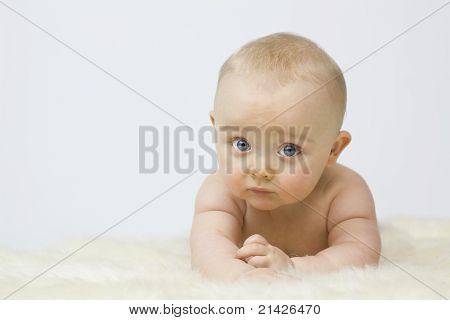 Cute Baby On White Background