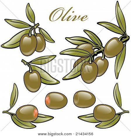 olive green. set.