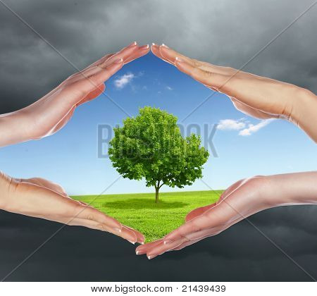 human hands protecting tree from darkness and pollution