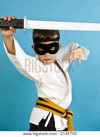 Karate Ninja
