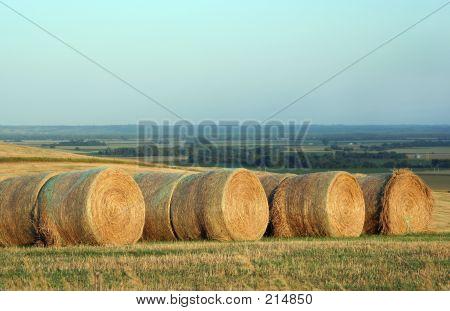 Round Bales, Nebraska