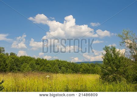 Summer Landscape With Blue Cloudy Sky