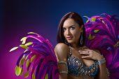 Beauty Brunette In Carnival Suit . poster
