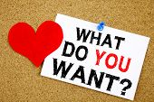 Conceptual Hand Writing Text Caption Inspiration Showing Question What Do You Want Concept For Goal poster