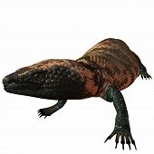 stock photo of gila monster  - 3 D Computer Render of an Gila Monster - JPG