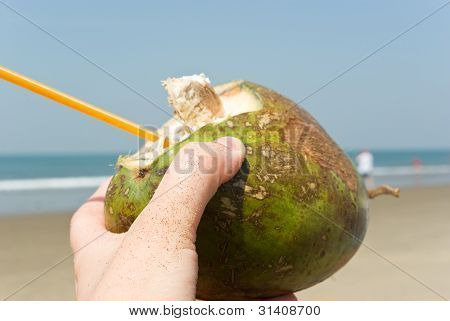 Coconut In Hand