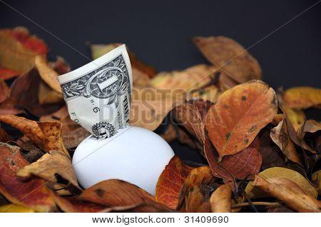 Money from an egg