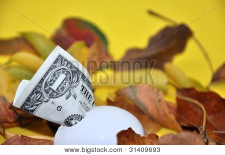 Dollar breaking out of an egg