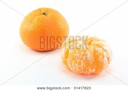 Satsuma Orange
