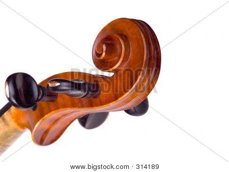 Violine Head