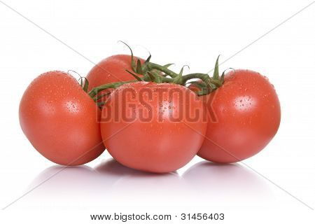 Fresh foods: tomatoes
