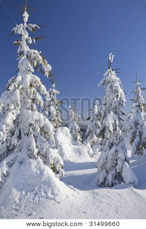 Snow Covered Mountain And Trees With Blue Sky In The Background