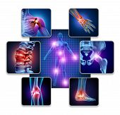 Human Body Joint Pain Concept As Skeleton And Muscle Anatomy Of The Body With A Group Of Sore Joints poster