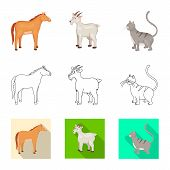 Vector Illustration Of Breeding And Kitchen Icon. Set Of Breeding And Organic Stock Vector Illustrat poster