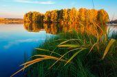Autumn Lake. Autumn Nature Landscape. Fall. Scenic Autumn. Picturesque View On  Riverside. Beautiful poster
