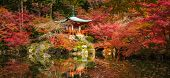 Daigoji Temple And Autumn Maple Trees In Momiji Season, Kyoto, Japan poster