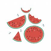 A Set Of Drawings Of Red Watermelons On A White Background. Doodle Drawing. Vector Drawing By Hand. poster