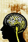 picture of side view  - a concept illustration about human brain full color image with fine art background.