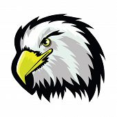 Stylized White American North Bald Eagle Head Tattoo Design. Logo Prey Bird Isolated On White Backgr poster