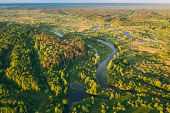 Aerial View Green Forest Woods And River Landscape In Sunny Spring Evening. Top View Of Beautiful Eu poster
