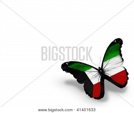 Kuwaiti Flag Butterfly, Isolated On White Background