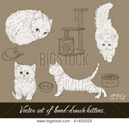 Vintage set with cute kittens.