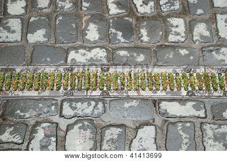 Grass Drain