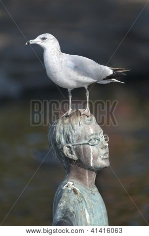 A bird and his statue